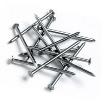 Гвозди строительные неоцинкованные 1,6*25 мм 0,5 кг
